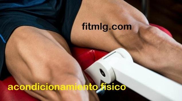 fitmlgserif